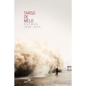 capa e-book
